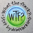 """What The Frack"" Handmade Collector's Pin"